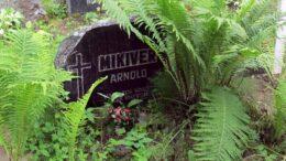 Arnold Mikiveri haud Loksa kalmistul