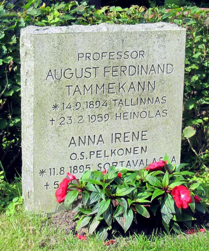 August Tammekann