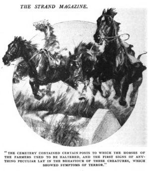 Saarenmaalaisia hevosia. The Strand Magazine, December 1919
